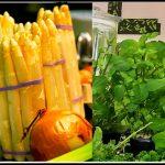 Spargelsalat mit Bärlauch zubereiten - Rezept für ein schnelles Spargelgericht